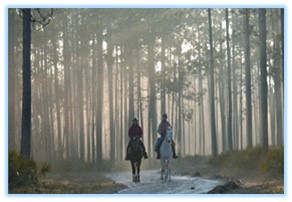 florida-greenways-horsebackridersanf